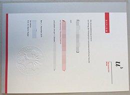 University of Bern diploma