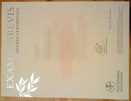Stockholm University fake diploma