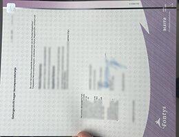 fontys fake diploma