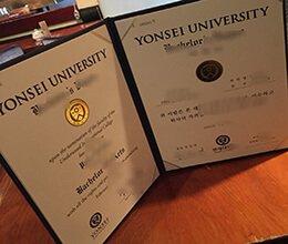 Yonsei University diploma