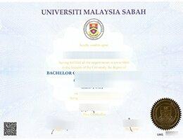 UMS fake diploma