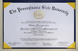 Pennsylvania State University degree