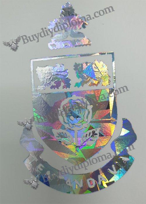 Metallic Foil Dual Color