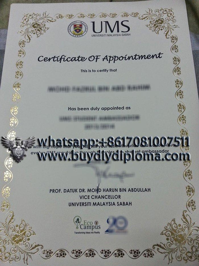 fake Universiti Malaysia Sabah degree