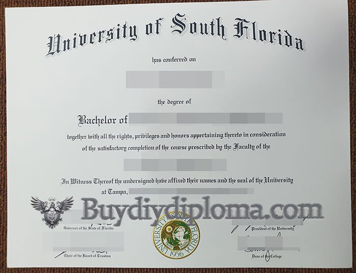 University of South Florida diploma