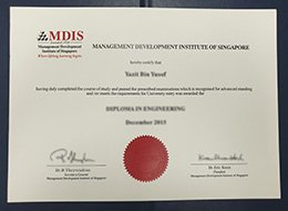 Management Development Institute of Singapore degree