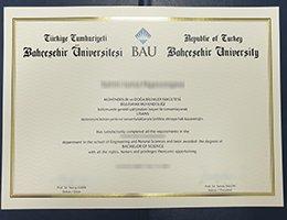 BAU University fake diploma