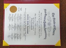 Texas CPA Certificate
