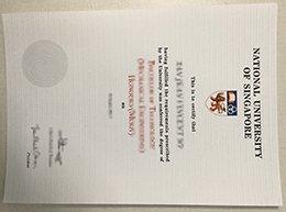 NUS diploma