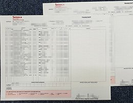 fake Seneca College transcript, buy Seneca College diploma,
