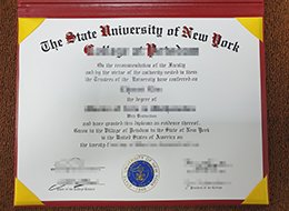 State University of New York diploma