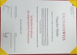 fake Berufsprüfung diploma, fake Switzerland diploma,