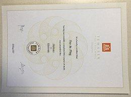 Temasek Polytechnic diploma