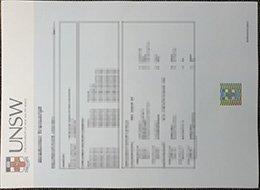 UNSW-Transcript