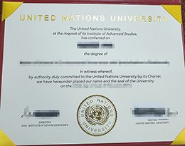 fake United Nations University diploma, buy United Nations University degree