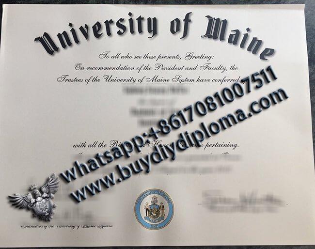 University-of-Maine-Diploma