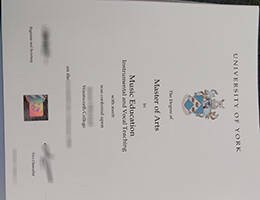 University of York fake diploma