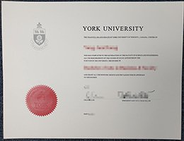 fake York University diploma, buy York University certificate,