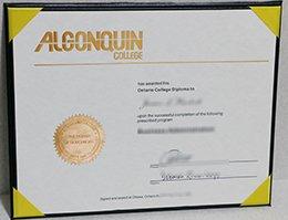 algonquin college diploma