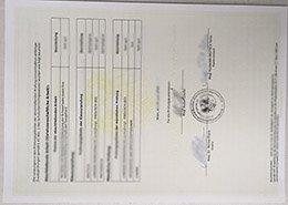 fake BRG and BORG Dornbirn-Schoren transcript, fake Austria transcript, fake Austria diploma,