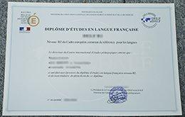 fake vd'études en langue française diploma