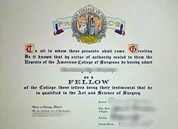 Fellowship Certificate