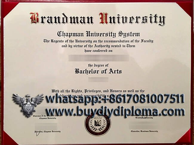 fake Brandman University diploma
