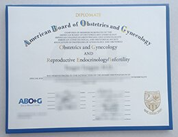 American Board of Obstetrics Gynecology certificate