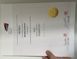 City university of Hong Kong Diploma