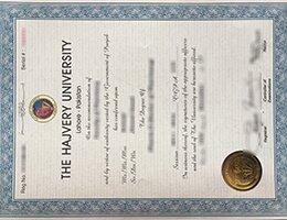 Hajvery-University-Diploma