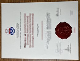 university of the free state diploma