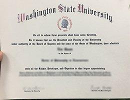 Fake WSU diploma