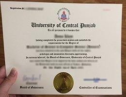uni of central punjab diploma