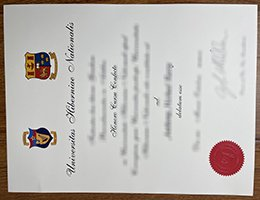 Universitas-Hiberniae-Nationalis-diploma