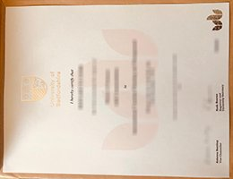 University of Bedfordshire Diploma