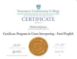 VCC degree