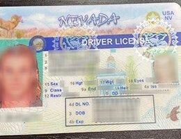 USA Nevada (NV) Scannable Drivers License