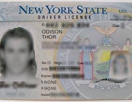 USA New York (NY) Scannable Drivers License