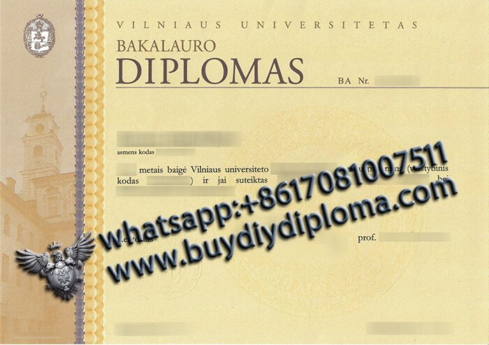 Vilniaus-universitetas-diploma