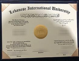 Lebanese International University degree