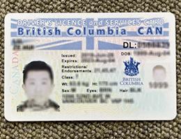 British-Columbia-Driver-license