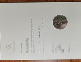 Chartered Accountants Australia and New Zealand (CA ANZ) certificate