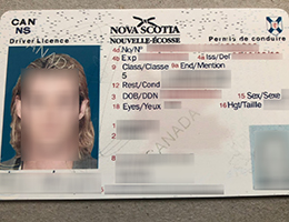Nova Scotia (NS) Scannable drivers license