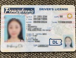 Pennsylvania Driver License