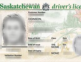 Saskatchewan Scannable driver's license