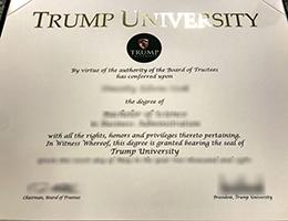 Trump University degree