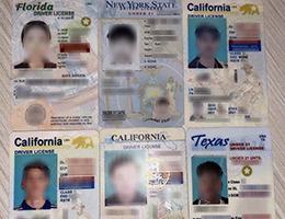 USA Vertical driver's license