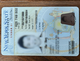 Vertical New York driver license