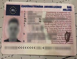 Ireland Driver License
