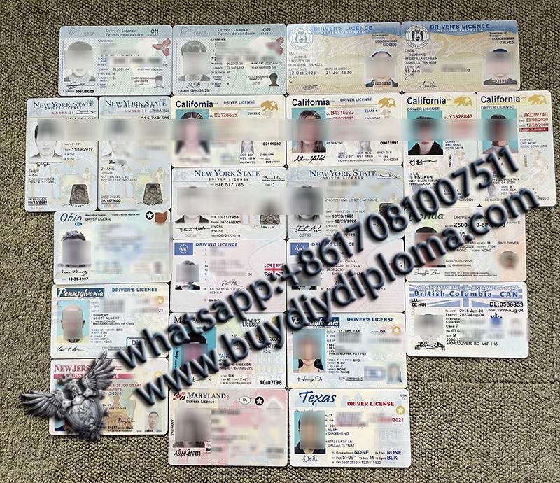 USA drivers licenses